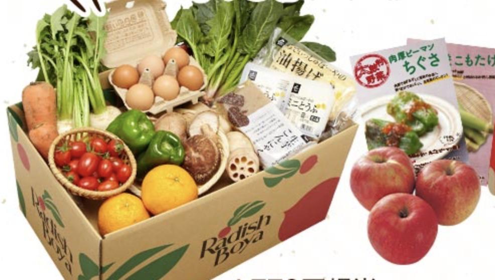 58%OFF!らでぃっしゅぼーやお試し野菜ボックスで食生活の質を上げましょう